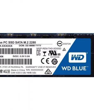 SSD WD 250GB M.2 BLUE INTERNAL SATA 6 GB/S